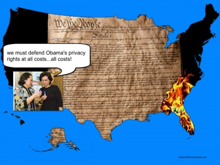 The U.S. Constitution is being burned as the Hawaii DOH continues to hide the truth about Obama