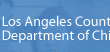 The Los Angeles Department of Children and Families Speaks on Foster Care, Adoption and Reunification pb